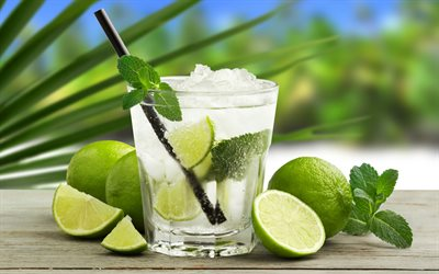 mojito, soft drinks, cocktails, ice drinks, lemon and mint, glass with drink