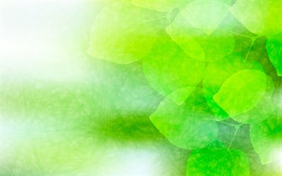 green leaves, green glare, abstract leaves, creative, abstract nature background
