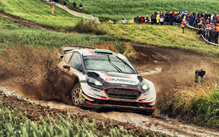 Download Wallpapers Ford Fiesta, Rally, Racing Car, WRC