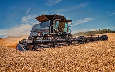 Massey Ferguson Ideal 9T, wheat harvesting, 2019 combines, combine, black combine, combine-harvester, agricultural machinery, Massey Ferguson