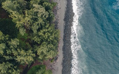 ocean, coast, aerial view, trees, coastline, top view, green trees
