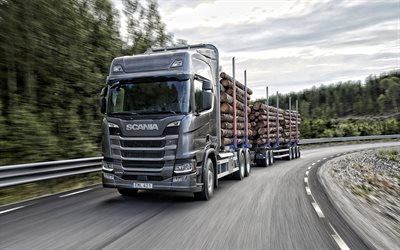 Scania R500, timber carrier, transportation of trees concepts, new gray R500, transportation, delivery concepts, deforestation concepts, Scania