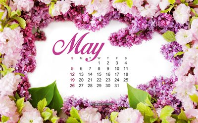 2019 May Calendar, lilac, creative art, calendar for May 2019, frame of lilac, spring, 2019 concepts, calendars