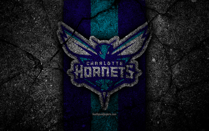 Charlotte Hornets NBA 4k Logo Black Stone Basketball Eastern Conference