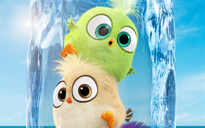 jungtiere, 4k, der angry birds-film 2, 2019-film, 3d-animation, angry birds 2