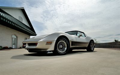 roasters, chevrolet corvette, sports cars, 1982, retro cars, silver chevy