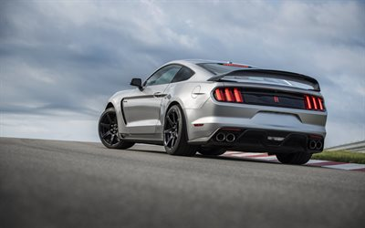 Ford Mustang GT350R, 2020, exterior, rear view, Mustang Shelby GT350R, silver sports car, new silver Mustang, tuning Mustang, American sports cars, Ford