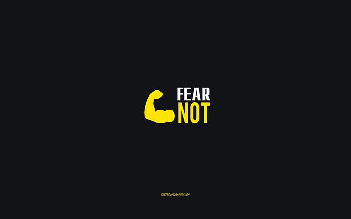 Fear not, gray background, motivation minimalism wallpaper, inspiration, Fear not concepts