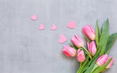 pink tulips, beautiful flowers, pink hearts, romantic background, March 8, spring flowers, tulips