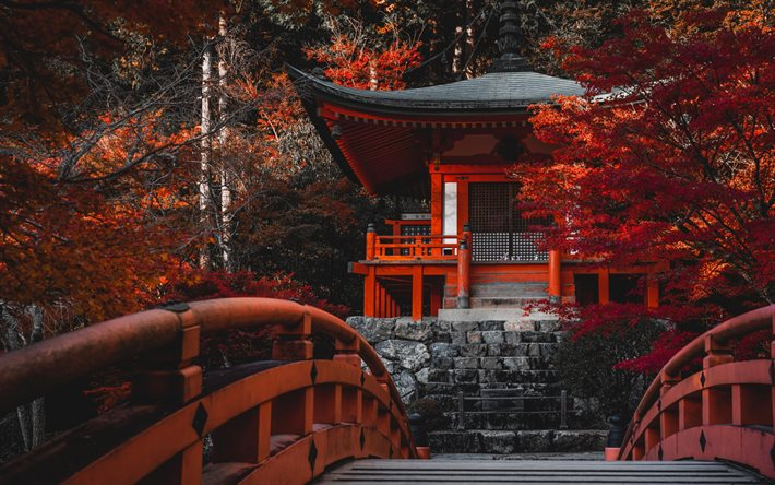 Daigo-ji Temple, Shingon Buddhist temple, Japanese temple, autumn, red trees, Fushimi-ku, Kyoto, Japan