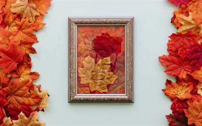 autumn, red leaves, yellow autumn leaves, frame, autumn concepts