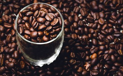 Coffee beans, glass, coffee, large coffee beans