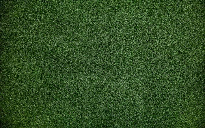 Indir Duvar Kağıdı çim Doku 4k Yeşil çimen Yeşil Arka Plan