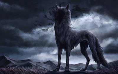 wolf at night, 4k, predators, fantasy loup, de la faune, darkness, loup