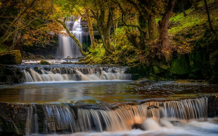 waterfalls, river, cascades, forest, water concepts, beautiful waterfalls, County Durham, England