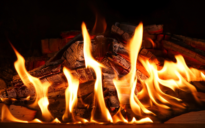 fire, 4k, firewood, fireplace, wood charcoal, flames, close-up