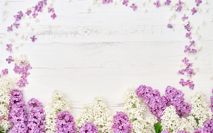 lilac frame, flower frame, purple spring flowers, wooden background, wooden texture, lilac, floral frames