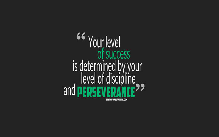 Download wallpapers Your level of success is determined by your level of  discipline and perseverance, quotes about success, motivation, gray  background, popular quotes for desktop free. Pictures for desktop free