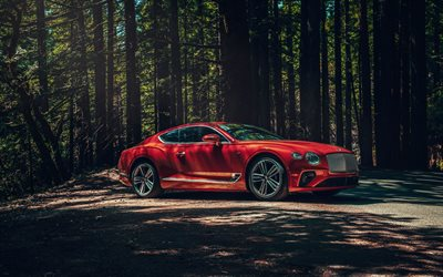 Bentley Continental GT, 2019, exterior, front view, red luxury coupe, new red Continental GT, car in the forest, British cars, Bentley