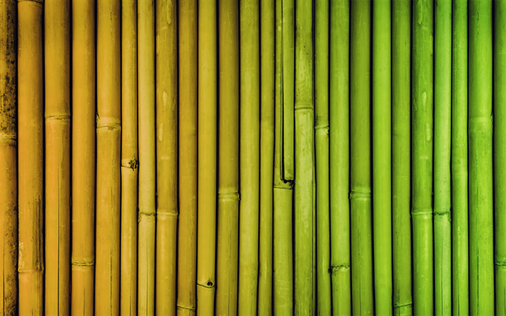 colorful bamboo texture, 4k, colorful bambusoideae sticks, macro, vertical bamboo texture, bamboo textures, bambusoideae sticks, bamboo canes, bamboo sticks, colorful wooden background, bamboo