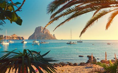 Ibiza, evening, sunset, Mediterranean sea, coast, seascape, palms, yachts, Spain, palms on the background of the sea
