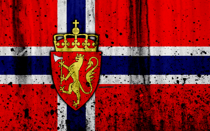 نتیجه تصویری برای علم النرويج