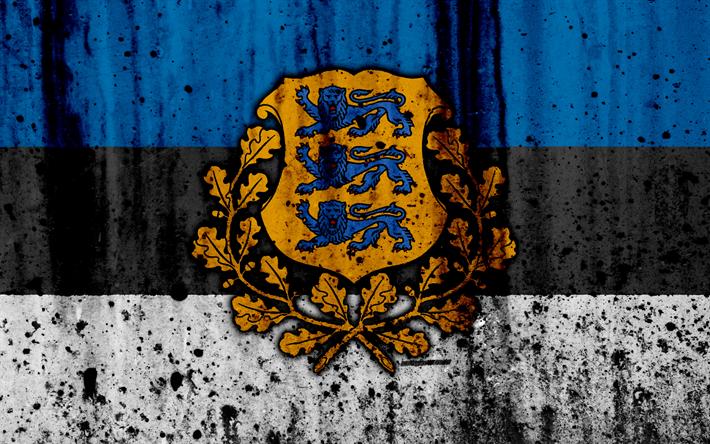 Viro Lippu