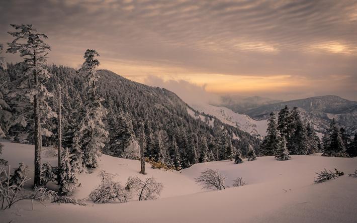 Scarica sfondi inverno montagna paesaggio foresta for Sfondi desktop inverno montagna
