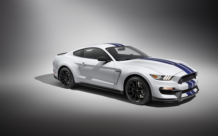 t l charger fonds d 39 cran ford mustang gt350 2017 blanc coup sport tuning voiture de course. Black Bedroom Furniture Sets. Home Design Ideas