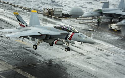 McDonnell Douglas FA-18 Hornet, FA-18C, US carrier-based fighter, US Navy, aircraft carrier, aircraft landing, US, military aircraft