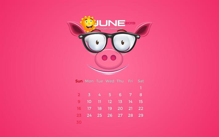 Calendario Rosa Png.Download Wallpapers June 2019 Calendar 4k Summer Pink