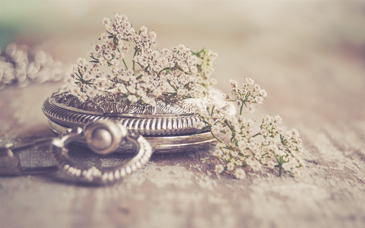 old pocket watch, bokeh, time concepts, retro style, silvery clock, wild flowers