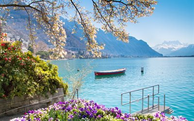 Lake Geneva, Montreux, Alps, morning, beautiful lake, flowers, mountain landscape, Montreux cityscape, Switzerland