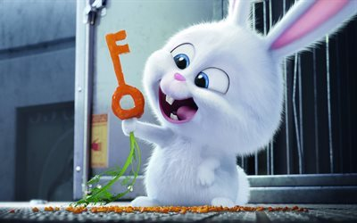 The secret life of pets, characters, 2016, rabbit, key
