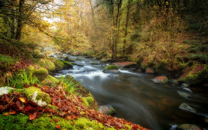 Download Wallpapers Mountain River Autumn Landscape Yellow