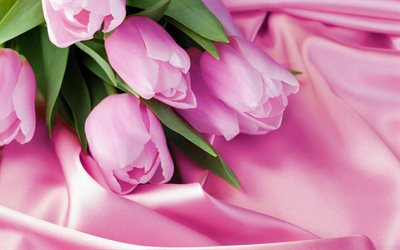 pink tulips, romantic bouquet, tulips, pink silk, pink flowers