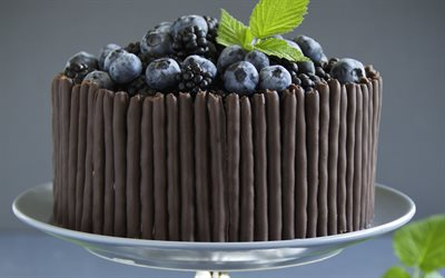 blueberry chocolate cake, berries, pie, chocolate, pastries, berries cake