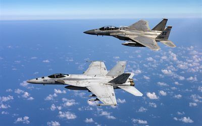 mcdonnell douglas f-15 eagle, american fighter aircraft, us-navy, die f-15d eagle, fa-18 super hornet