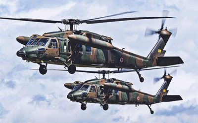 Mitsubishi H-60, two helicopters, Japanese Army, combat aircraft, NATO, Japanese Air Force, attack helicopters, Japan Self-Defense Forces, JSDF, Sikorsky UH-60 Black Hawk