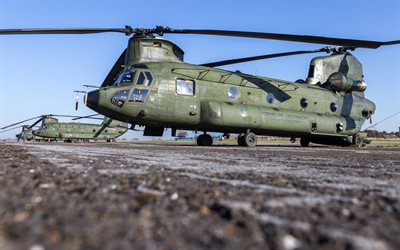 Boeing CH-47D Chinook, american heavy military transport helicopter, CH-47, military helicopters, Royal Netherlands Air Force