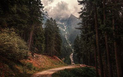 Alps, evening, sunset, waterfall, forest, mountain landscape, green trees, South Tyrol, Italy