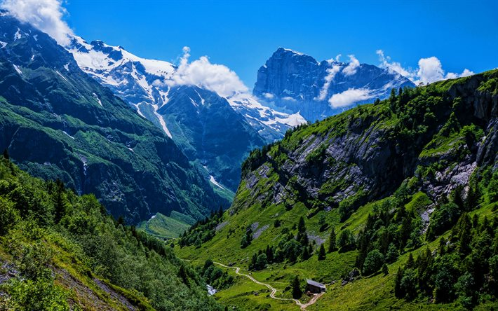 Engelberg, 4k, Alps, summer, mountains, Switzerland, beautiful nature, Europe