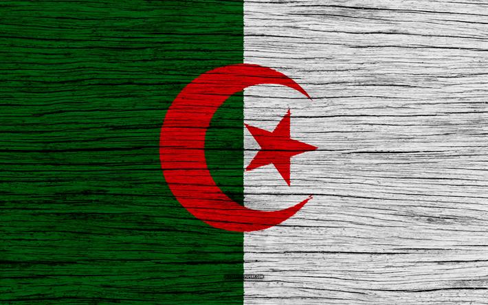 Fond D Écran Algerie télécharger fonds d'écran drapeau de l'algérie, 4k, en afrique, en