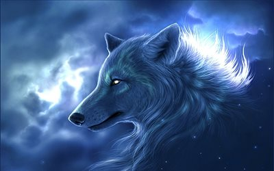 white wolf, predators, night, art, wolf