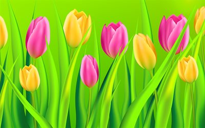 purple tulips, yellow tulips, spring flowers, background with tulips, cartoon tulips, beautiful flowers, tulips