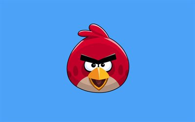 Red, 4k, minimal, protagonist, Angry Birds, blue background