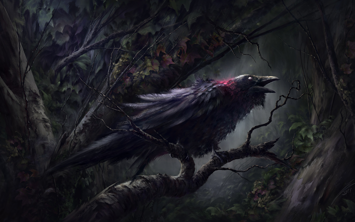 Raven, forest, darkness, artwork, black bird