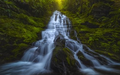 cascading waterfall, rocks, forest, green trees, waterfall, mountains, Washington State, USA