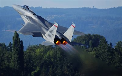 McDonnell Douglas F-15 Eagle, fighter, combat aircraft