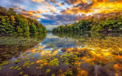 river, autumn, forest, sunset, beautiful landscapes, Europe